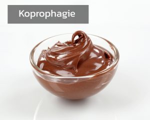 Koprophagie